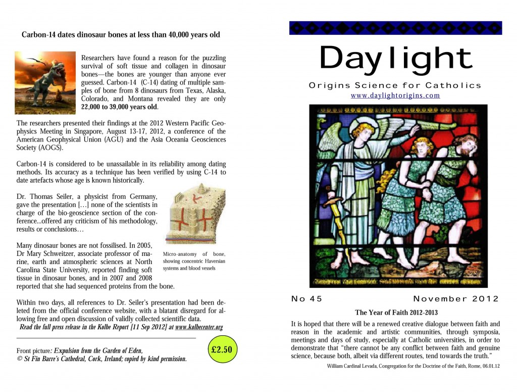Daylight-45-front-and-back-cover