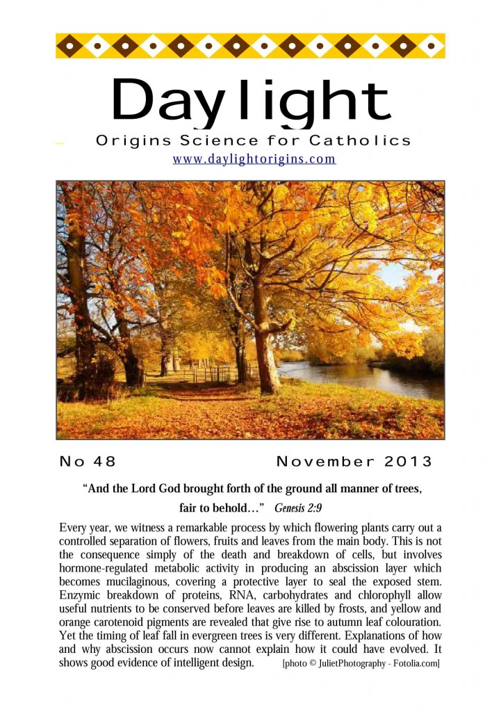 A contemporary edition of Daylight origins science magazine for Catholics
